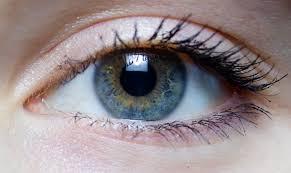 Pics Of Eyes Eyes Ophthalmology Optometry Lasik Overland Park Interesting Eye