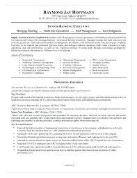 Sample Job Resume Executive Example Of Job Resume Pdf – Rekomend.me