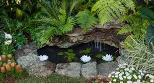 Backyard Pond Build A Stunning And Serene Backyard Pond Better Homes And Gardens