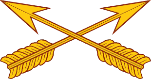 United States <b>Army Special</b> Forces - Wikipedia