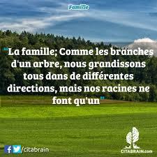 Une Comparaison Entre Les Branches Dun Arbre Et La Famille