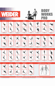 Home Gym Workout Chart Pdf Weider Home Exercise Online Charts Collection