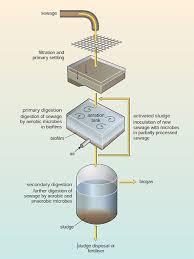 Microbes Friend Or Foe 2 Microbes In Sewage Treatment