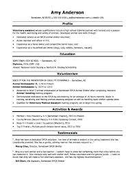 Resume Example Graphic Design Advertising Brief Sample Proposal ...