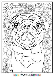 pug coloring pages pug coloring pages pug coloring page pug puppy coloring pages free pug coloring