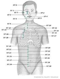 Sujok Acupressure Points Chart Acupressure Point Chart For