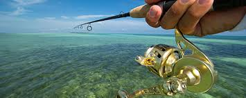 Dream Catcher Charters Key West Interesting Key West Fishing