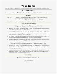 Resume For File Clerk Best Of Data Entry Skills Resume Pdf Format