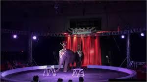 3 times garden bros circus canceled shows