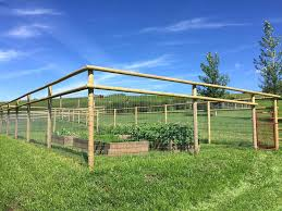 how to keep deer out of garden keep deer out of garden lovely fence to keep