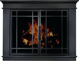 Glass Fireplace Doors Open Or Closed Gas Door Parts Wood Cleaner ...