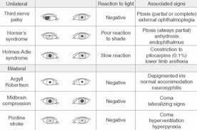 The Eye Clinical Gate
