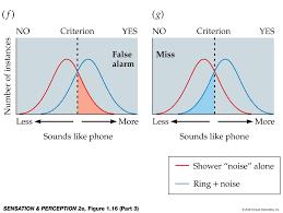 Psychophysics & Signal Detection Theory