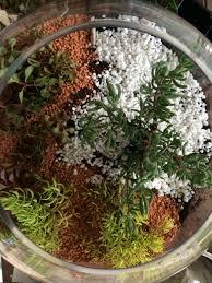 miniature terrarium fairy garden be a