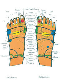 Top Of Feet Chart Foot Chart Pressure Points Reflexology