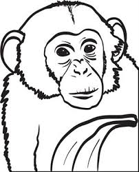 Small Picture Free Printable Chimpanzee Coloring Page for Kids 2