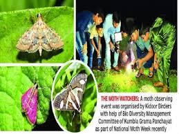 In Kidoor Village Nature Enthusiasts Keep An Eye On Moths