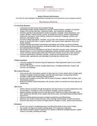 Resume Combination Resume Example