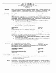 Better Resume Executive Resumes Templates Building A Better Resume Tax Auditor 6