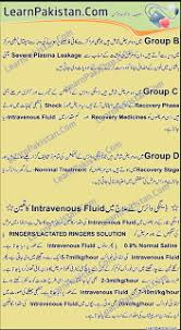 essays for students dengue in urdu dengue in urdu