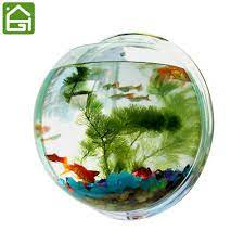 dayoly wall hanging fish tank