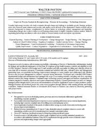 Executive Resume Sample Work Experience Resume Resume Format For