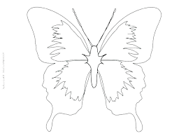 Printable Butterfly Outline Printable Pictures Of Butterflies Sarcaceramics Co