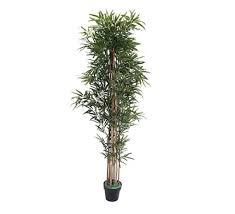 Confira as ofertas que a magalu separou para você. 75 Plantas Artificiais Dicas E Decoracoes Com Folhagens