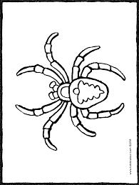 Kleurplaten Vogelspinnen