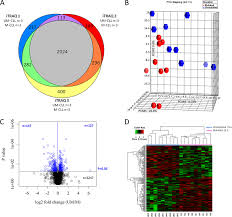 Venn Diagram Bioinformatics Bioinformatic Analysis Of Proteins Identified By Itraq Ms A Venn