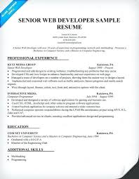 Software Engineer Resume Samples Software Engineer Resume Format ...