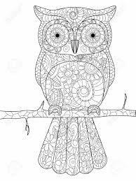 ilration owl on a branch coloring book for s raster ilration anti stress coloring for style bird black and white lines lace pattern