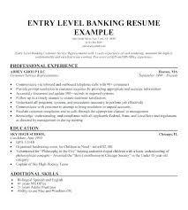 Resume Summary Example Best Good Resume Summary Examples Example Resume Summary Examples Of