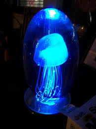 Lava Lamp Jellyfish Car Essay