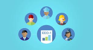 Eeo Process Chart Understanding Eeo Job Categories Employers Definite Guide