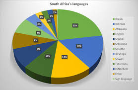 Languages Spoken In India Pie Chart South Africas Languages Brand South Africa