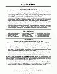 Bistrun Resume Template List Of Accomplishments For Resume