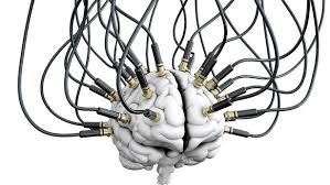 Resultado de imaxes para cerebro y laboratorio