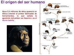 El origen de la vida y el origen del ser humano