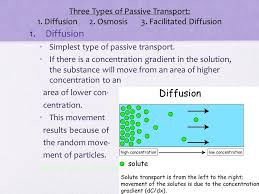 3 Types Of Passive Transport Chapter 8 Cells Their Environment Ppt Download