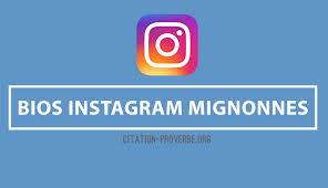 Citations Mignonnes A Mettre Sur Des Idees Bios Instagram