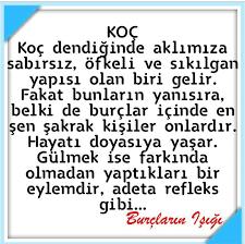 100 Koç burcu -Ideen | horoskop, sternzeichen, widder