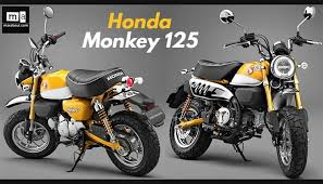 2018 honda monkey. beautiful 2018 honda monkey  in 2018 honda monkey