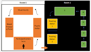 Flow Chart Depicting Participant Flow During Screening Room