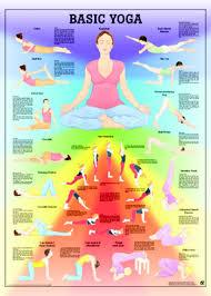 Basic Yoga Anatomical Chart