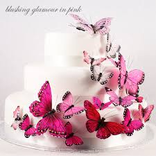 Beautiful Butterfly Cake Decorating Set 24 Pcs Butterfly Wedding