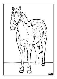 Mustang Da Colorare Cavalli Da Colorare