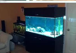 Aquarium furniture design 120 Gallon Aquariam Furniture Unique Fish Tank Stand Ideas Photos Design Most Attractive Collection Of Aquarium Furniture Aquarium Furniture Ideas Rememberingfallenjscom Aquariam Furniture Unique Fish Tank Stand Ideas Photos Design Most