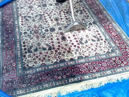 easy to clean area rugs easy to clean area rugs easy ways to clean area rugs