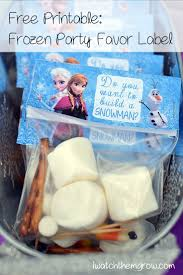 Pinterest Frozen Birthday Party Favors